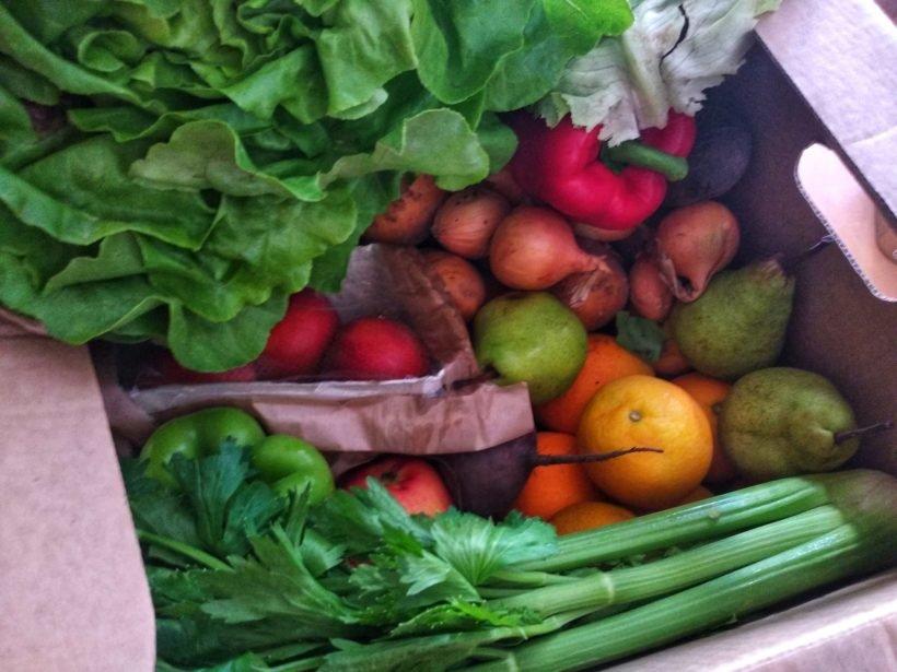 Fruits et légumes dans un carton