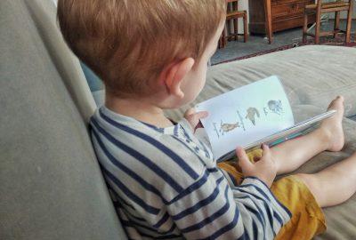 Enfant lisant un imagier